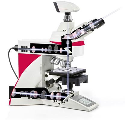 徕卡DM4 B & 徕卡DM6 B 正置显微镜 正置双目生物显微镜